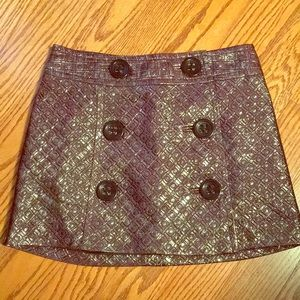 Express Metallic Skirt
